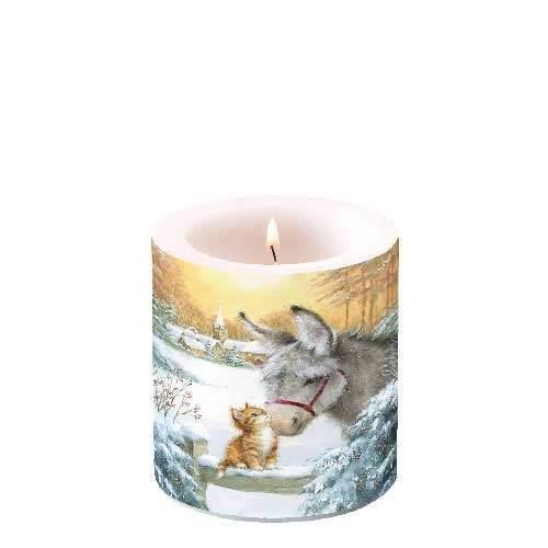 Kerze klein Esel und Katze
